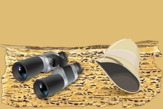 Occupati anche degli animali della savana che appartengono agli altri giocatori accogliendoli nella riserva africana.