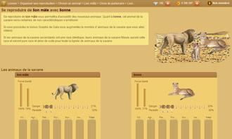 Lionzer - Organizzare una riproduzione